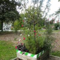 Jardin sur toiture | Parking et engazonnement | Collaboration associative | Barrières | Plantations | Partenaire décoration des Automnales