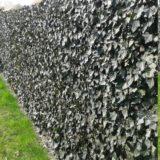 detail-barriere-saule-2012