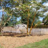 protection-des-arbres-3